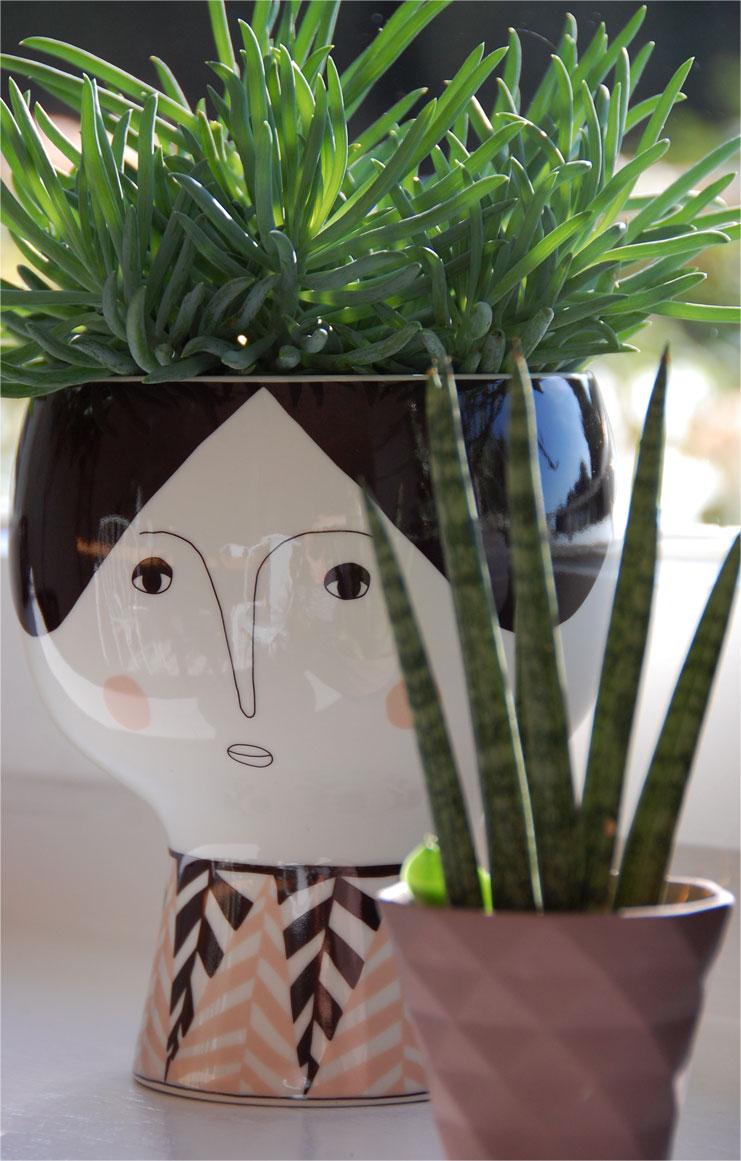 Urban Jungle - Dekorieren mit Pflanzen